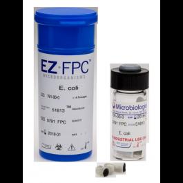 Escherichia coli ATCC 51813 - EZ-FPC - 1,0E3 à 9,9E3 UFC/pastille