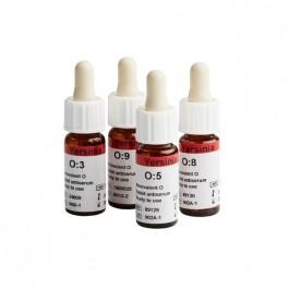 Antisérum - Yersinia enterocolitica antiserum O:8
