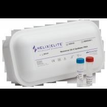 Pan Mycoplasma Synthetic DNA - - Helix Elite - -