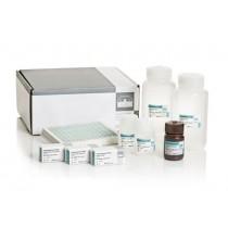 Pseudomonas-CF-IgG standard control serum