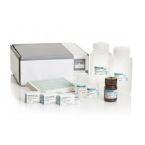 Pseudomonas-CF-IgG ELISA kit