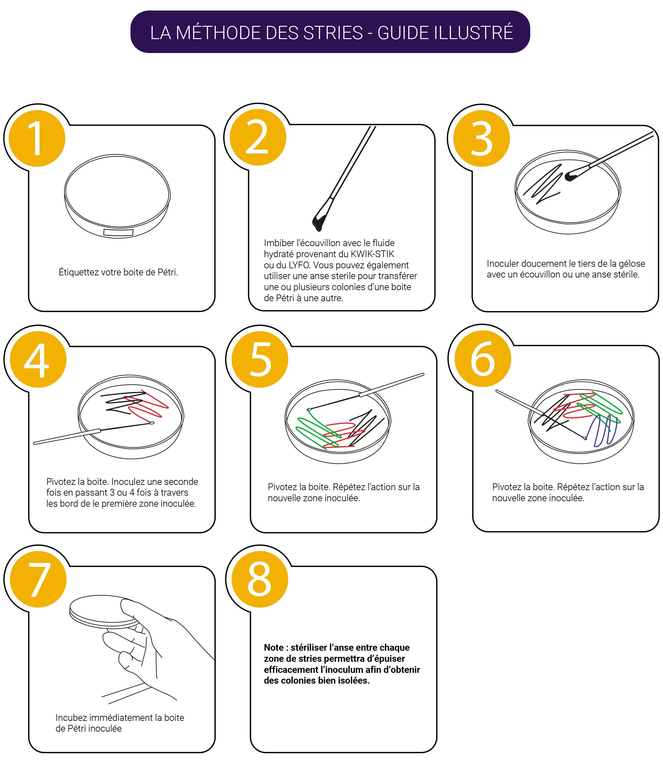 la méthode des stries - guide illustré