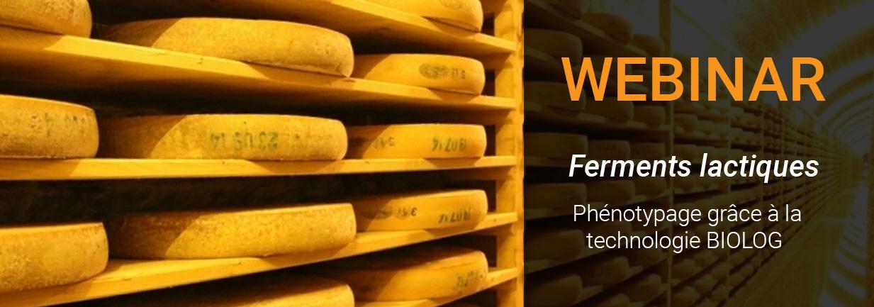 webinar phenotypage ferments lactiques
